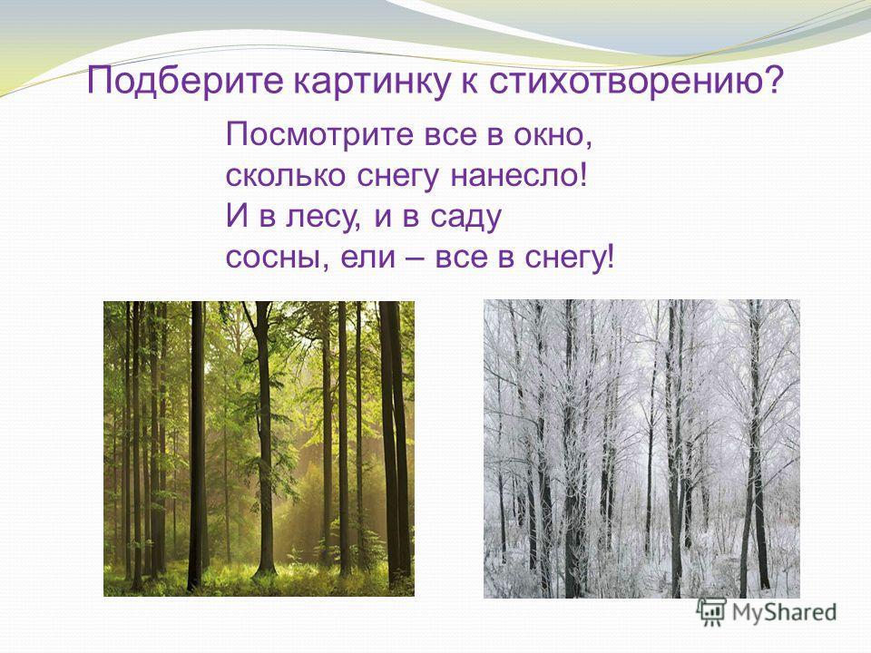 Посмотрите все в окно, сколько снегу нанесло! И в лесу, и в саду сосны, ели – все в снегу! Подберите картинку к стихотворению?
