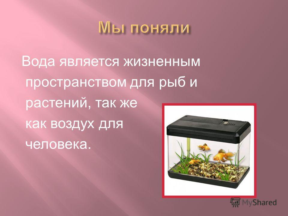Вода является жизненным пространством для рыб и растений, так же как воздух для человека.