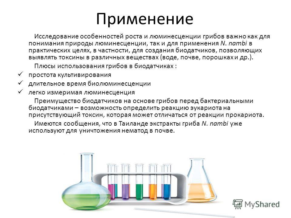 Применение Исследование особенностей роста и люминесценции грибов важно как для понимания природы люминесценции, так и для применения N. nambi в практических целях, в частности, для создания биодатчиков, позволяющих выявлять токсины в различных вещес