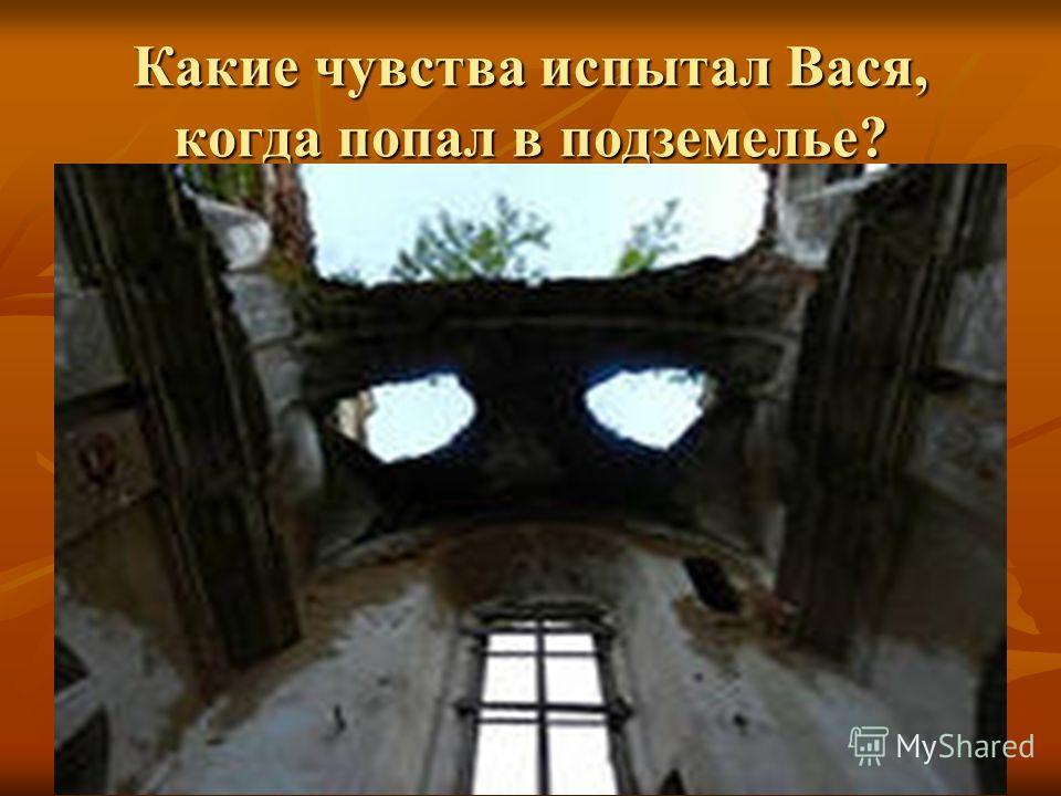 Какие чувства испытал Вася, когда попал в подземелье?
