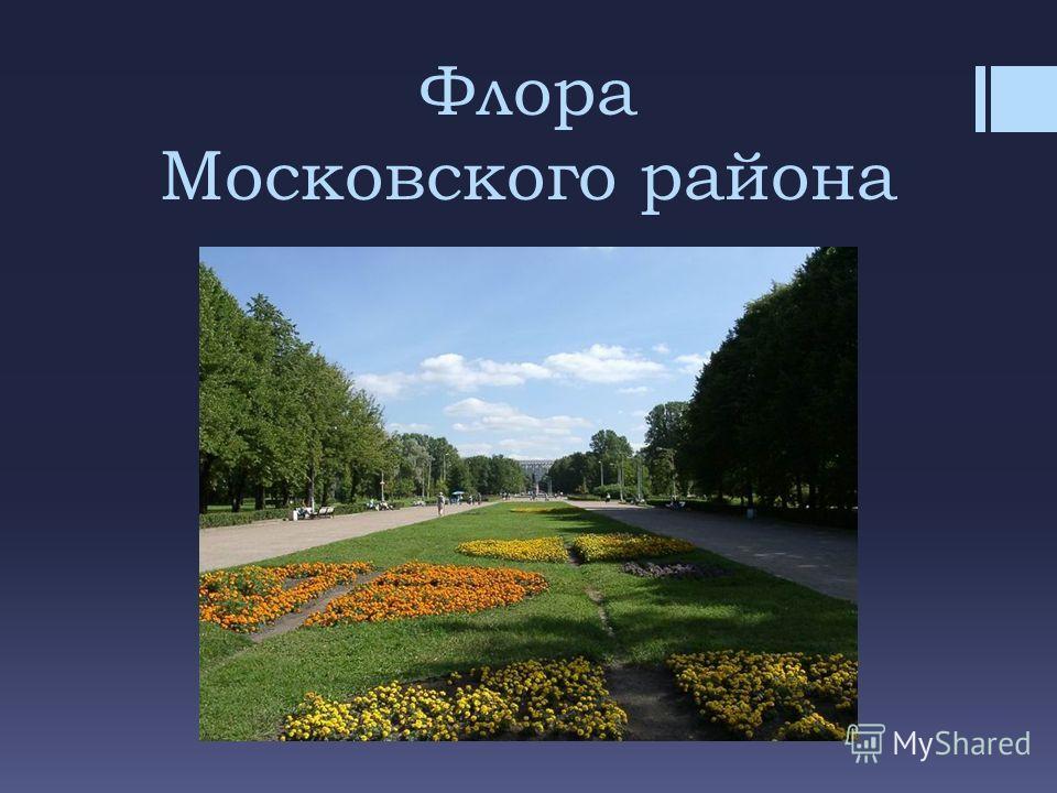 Флора Московского района