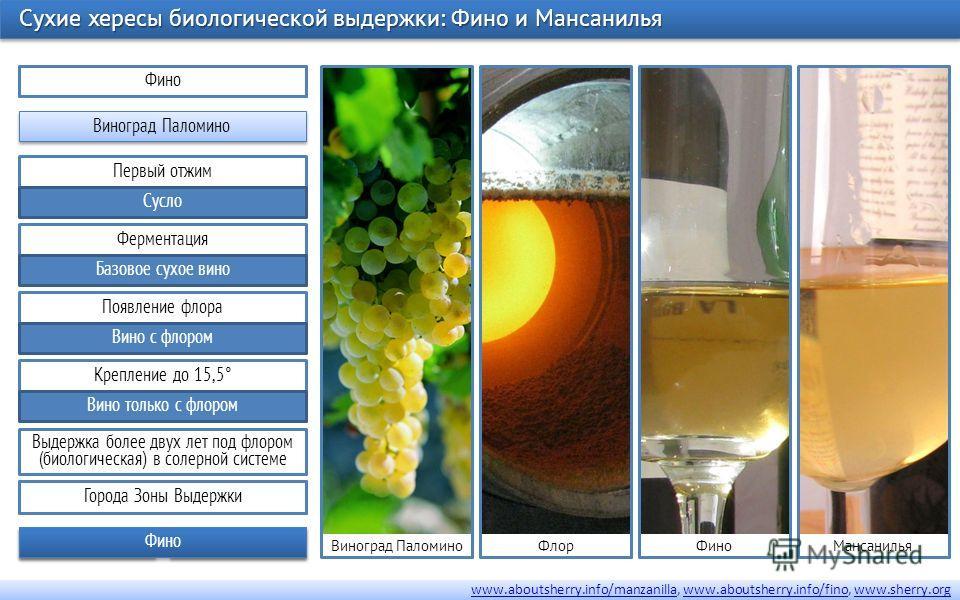 Первый отжим Сусло Ферментация Базовое сухое вино Крепление до 15,5° Вино только с флором Появление флора Вино с флором Фино Виноград Паломино Выдержка более двух лет под флором (биологическая) в солерной системе Сухие хересы биологической выдержки: