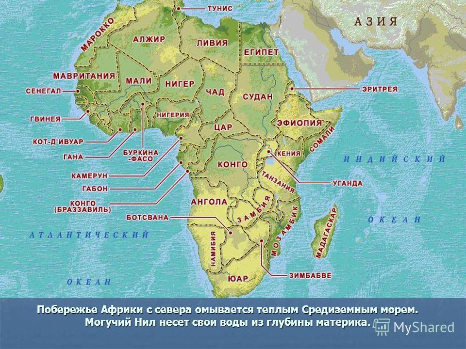 Побережье Африки с севера омывается теплым Средиземным морем. Могучий Нил несет свои воды из глубины материка.