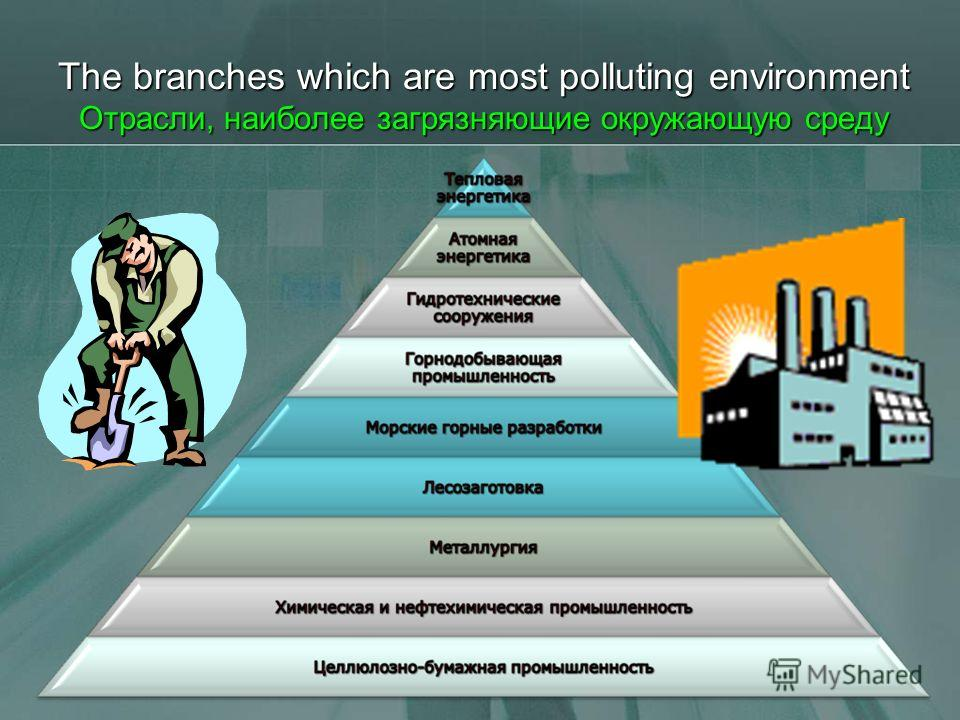 The branches which are most polluting environment Отрасли, наиболее загрязняющие окружающую среду