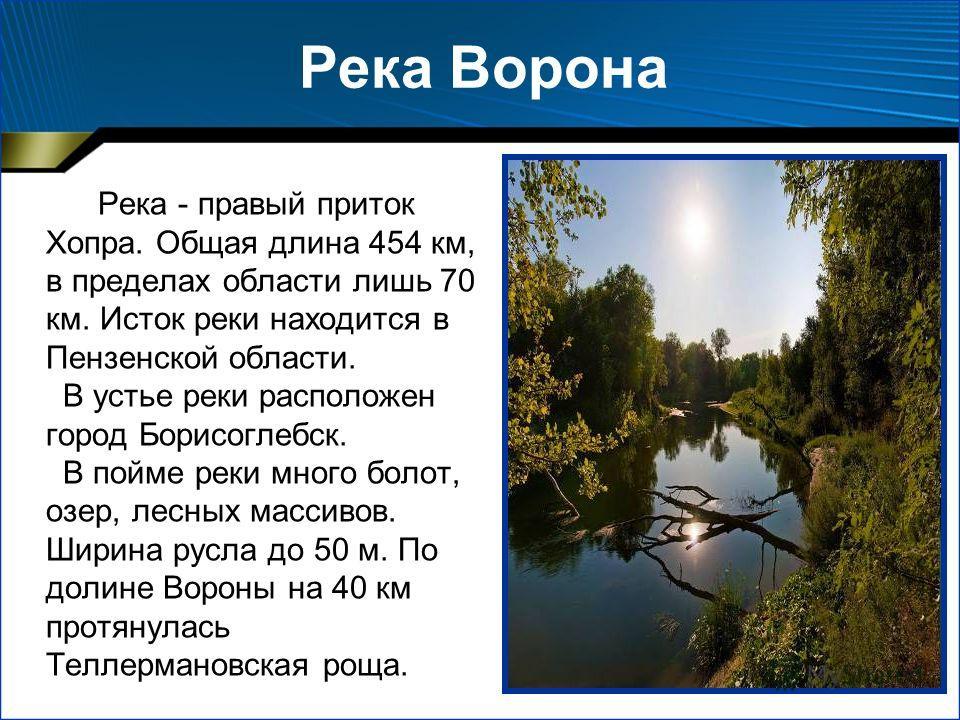 Река Ворона Река - правый приток Хопра. Общая длина 454 км, в пределах области лишь 70 км. Исток реки находится в Пензенской области. В устье реки расположен город Борисоглебск. В пойме реки много болот, озер, лесных массивов. Ширина русла до 50 м. П