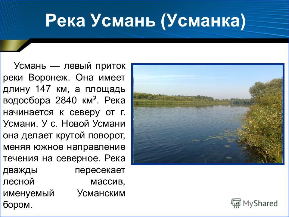 Река Усмань (Усманка) Усмань левый приток реки Воронеж. Она имеет длину 147 км, а площадь водосбора 2840 км 2. Река начинается к северу от г. Усмани. У с. Новой Усмани она делает крутой поворот, меняя южное направление течения на северное. Река дважд