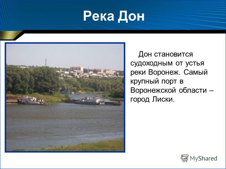 Река Дон Дон становится судоходным от устья реки Воронеж. Самый крупный порт в Воронежской области – город Лиски.