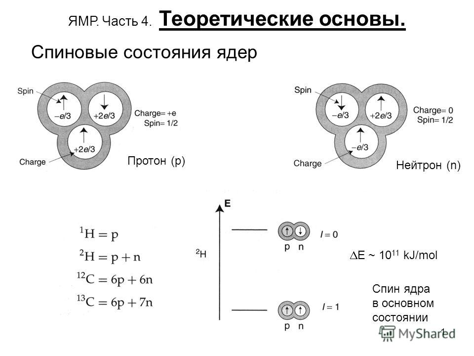 1 Спиновые состояния ядер Протон (p) Нейтрон (n) Спин ядра в основном состоянии E ~ 10 11 kJ/mol ЯМР. Часть 4. Теоретические основы.