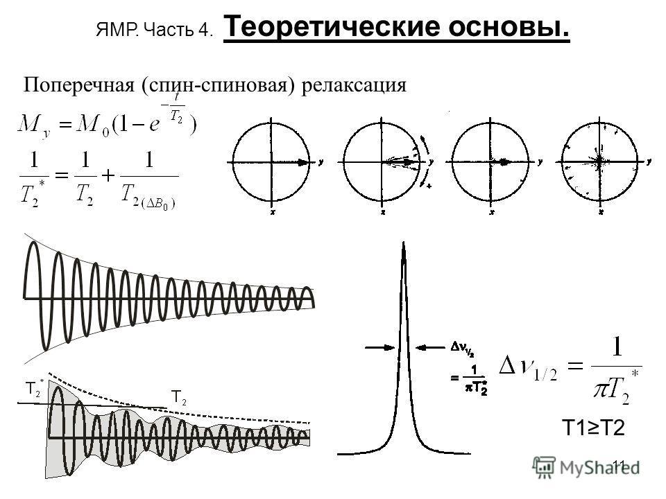 11 ЯМР. Часть 4. Теоретические основы. Поперечная (спин-спиновая) релаксация T1T2