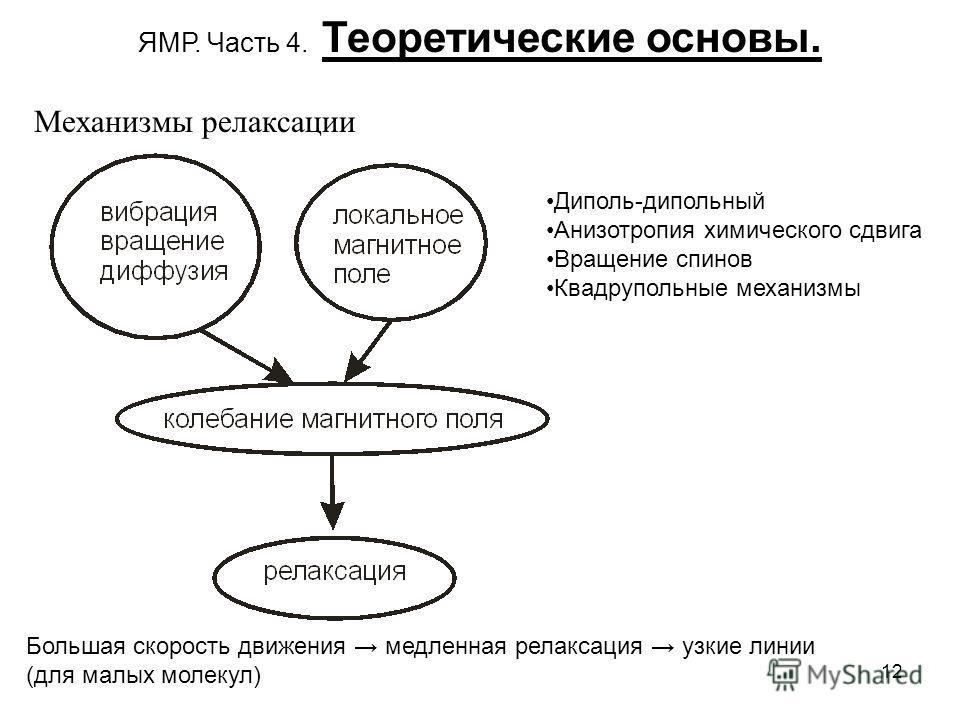 12 ЯМР. Часть 4. Теоретические основы. Механизмы релаксации Диполь-дипольный Анизотропия химического сдвига Вращение спинов Квадрупольные механизмы Большая скорость движения медленная релаксация узкие линии (для малых молекул)