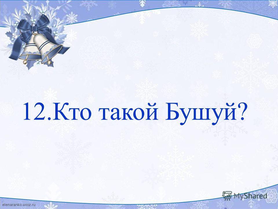 12.Кто такой Бушуй?