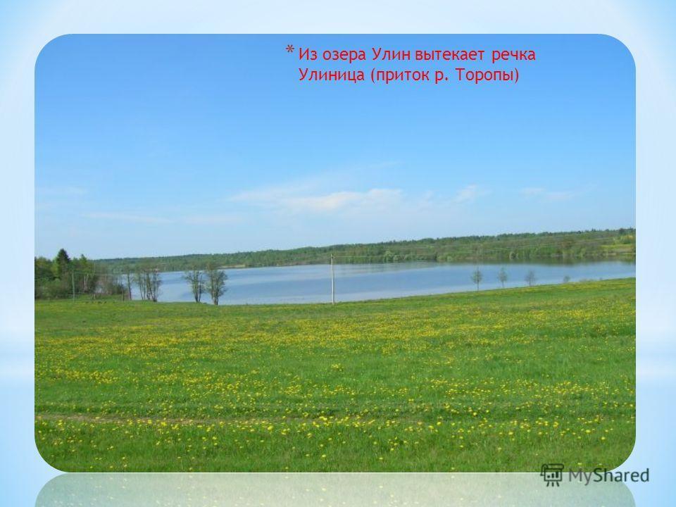 * Из озера Улин вытекает речка Улиница (приток р. Торопы)