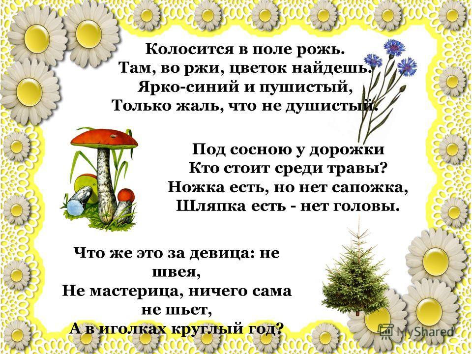 Колосится в поле рожь. Там, во ржи, цветок найдешь. Ярко-синий и пушистый, Только жаль, что не душистый. Под сосною у дорожки Кто стоит среди травы? Ножка есть, но нет сапожка, Шляпка есть - нет головы. Что же это за девица: не швея, Не мастерица, ни
