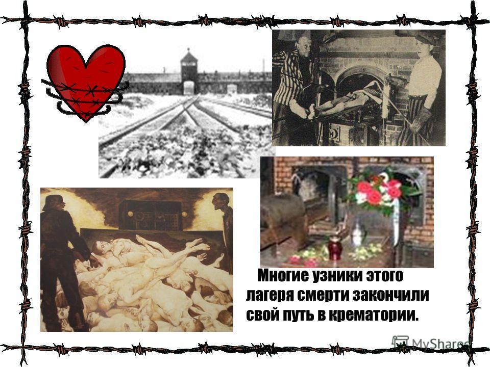 Многие узники этого лагеря смерти закончили свой путь в крематории.