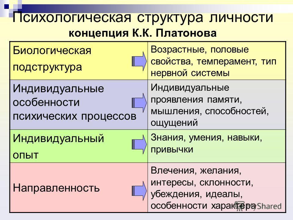 Психологическая структура личности концепция К.К. Платонова Биологическая подструктура Возрастные, половые свойства, темперамент, тип нервной системы Индивидуальные особенности психических процессов Индивидуальные проявления памяти, мышления, способн