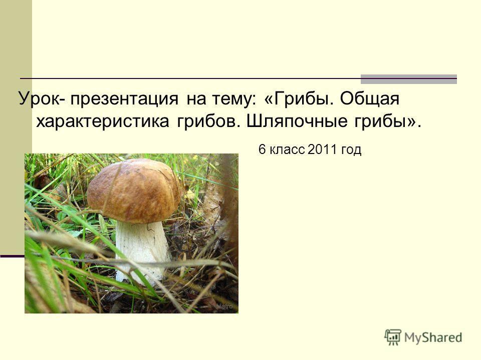 Урок- презентация на тему: «Грибы. Общая характеристика грибов. Шляпочные грибы». 6 класс 2011 год