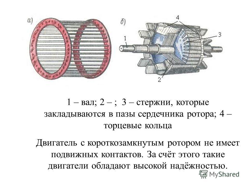 Обмотка короткозамкнутого ротора выполняется в виде цилиндрической клетки из медных или алюминиевых стержней, которые без изоляции вставляются в пазы ротора. Торцевые концы стержней замыкаются накоротко кольцами из того же материала. Часто обмотка из