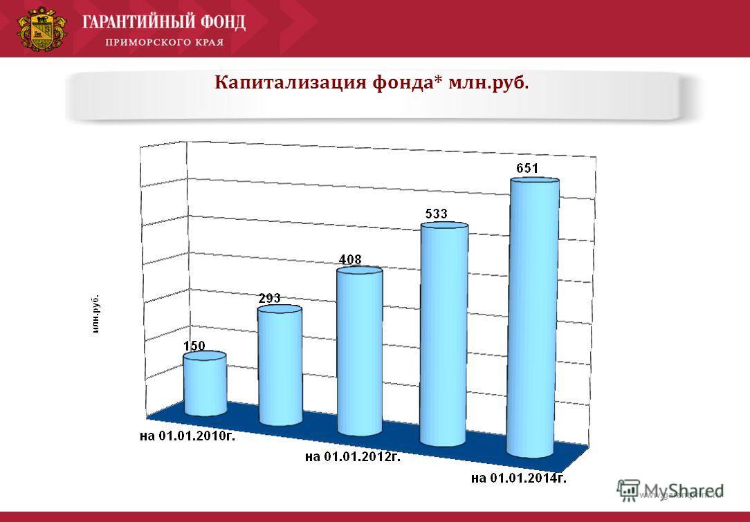 www.garantprim.ru Капитализация фонда* млн.руб.