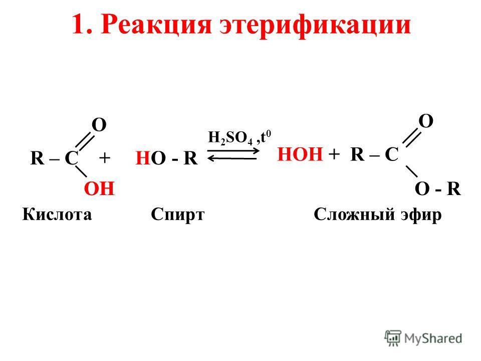 R – C + HO - R H 2 SO 4,t 0 O ОHОHOH КислотаСпиртСложный эфир НОН + R – C О - R O 1. Реакция этерификации