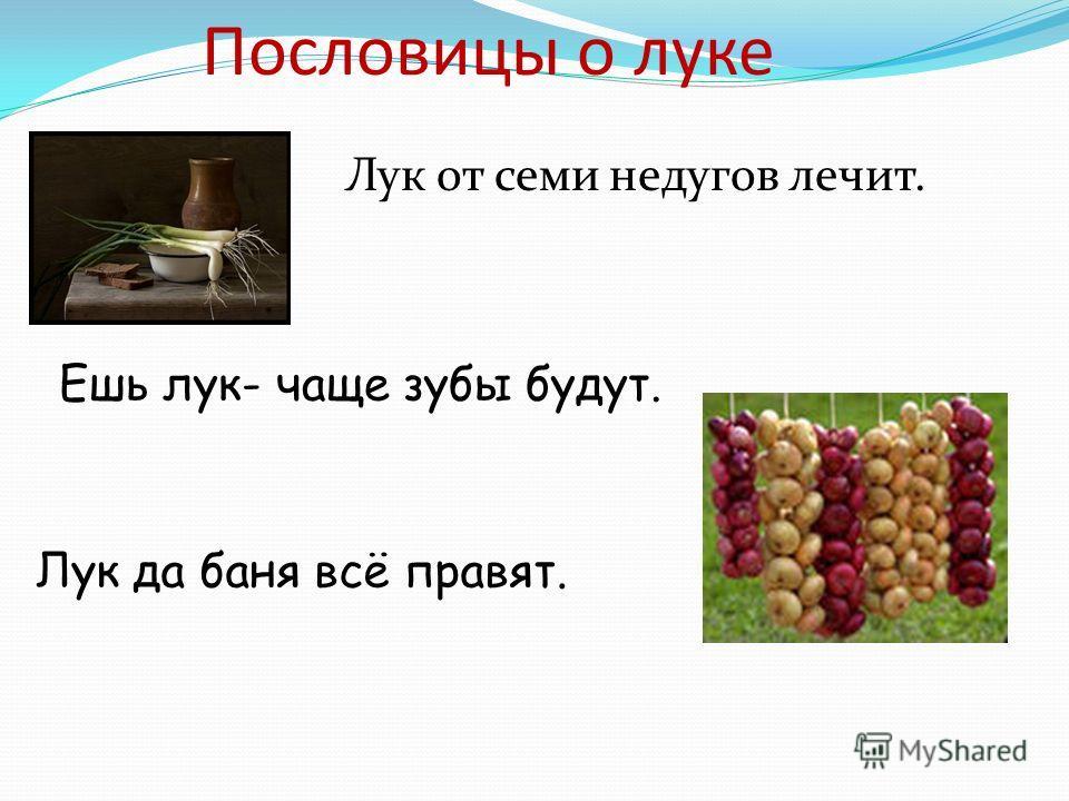 Пословицы о луке Лук от семи недугов лечит. Ешь лук- чаще зубы будут. Лук да баня всё правят.