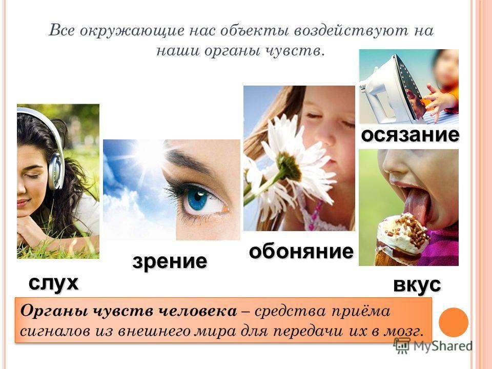 Органы чувств человека – средства приёма сигналов из внешнего мира для передачи их в мозг. Все окружающие нас объекты воздействуют на наши органы чувств. зрение слух вкус обоняние осязание
