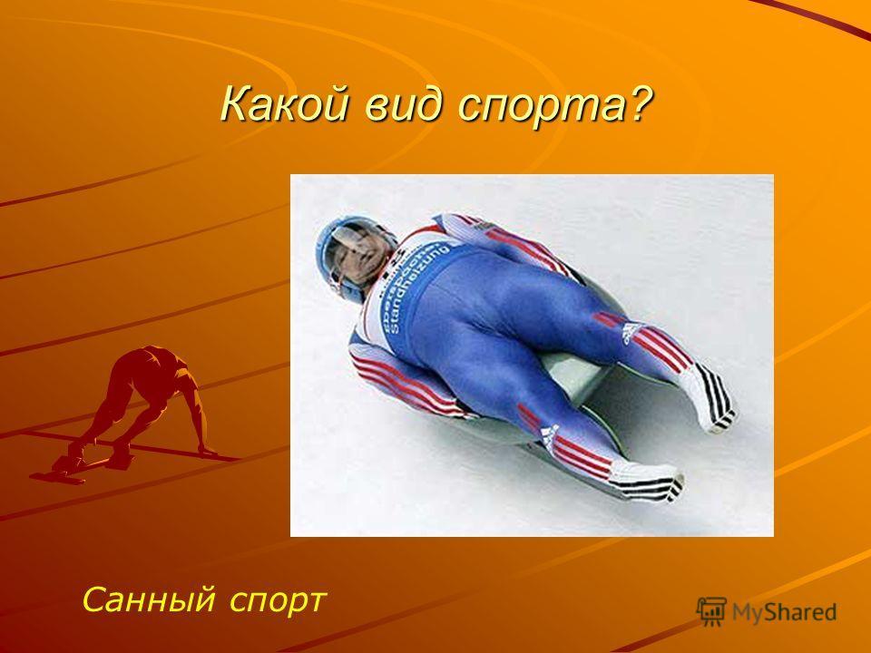 Какой вид спорта? Санный спорт