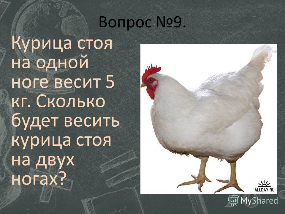 Вопрос 9. Курица стоя на одной ноге весит 5 кг. Сколько будет весить курица стоя на двух ногах?