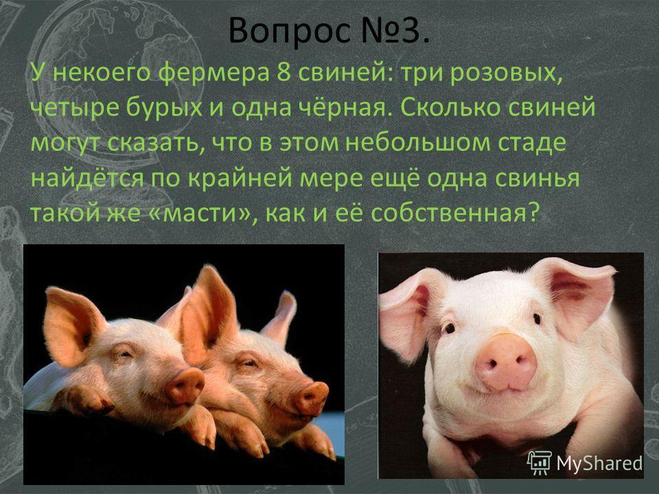 Вопрос 3. У некоего фермера 8 свиней: три розовых, четыре бурых и одна чёрная. Сколько свиней могут сказать, что в этом небольшом стаде найдётся по крайней мере ещё одна свинья такой же «масти», как и её собственная?