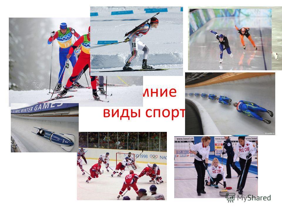 Зимние виды спорта Лыжный спорт Биатлон Конькобеж ный спорт Санный спорт Кёрлинг Хоккей с шайбой Бобслей