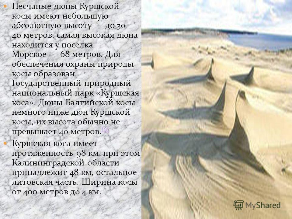 Песчаные дюны Куршской косы имеют небольшую абсолютную высоту до 30 40 метров, самая высокая дюна находится у поселка Морское 68 метров. Для обеспечения охраны природы косы образован Государственный природный национальный парк «Куршская коса». Дюны Б