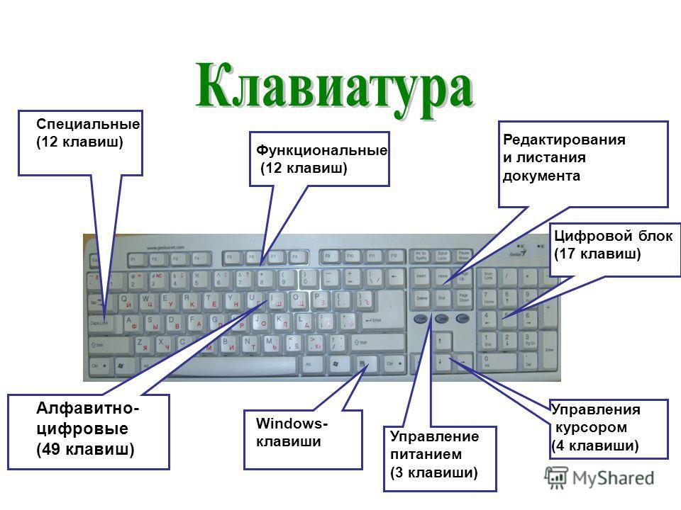 Редактирования и листания документа Windows- клавиши Специальные (12 клавиш) Функциональные (12 клавиш) Цифровой блок (17 клавиш) Управления курсором (4 клавиши) Управление питанием (3 клавиши) Алфавитно- цифровые (49 клавиш)