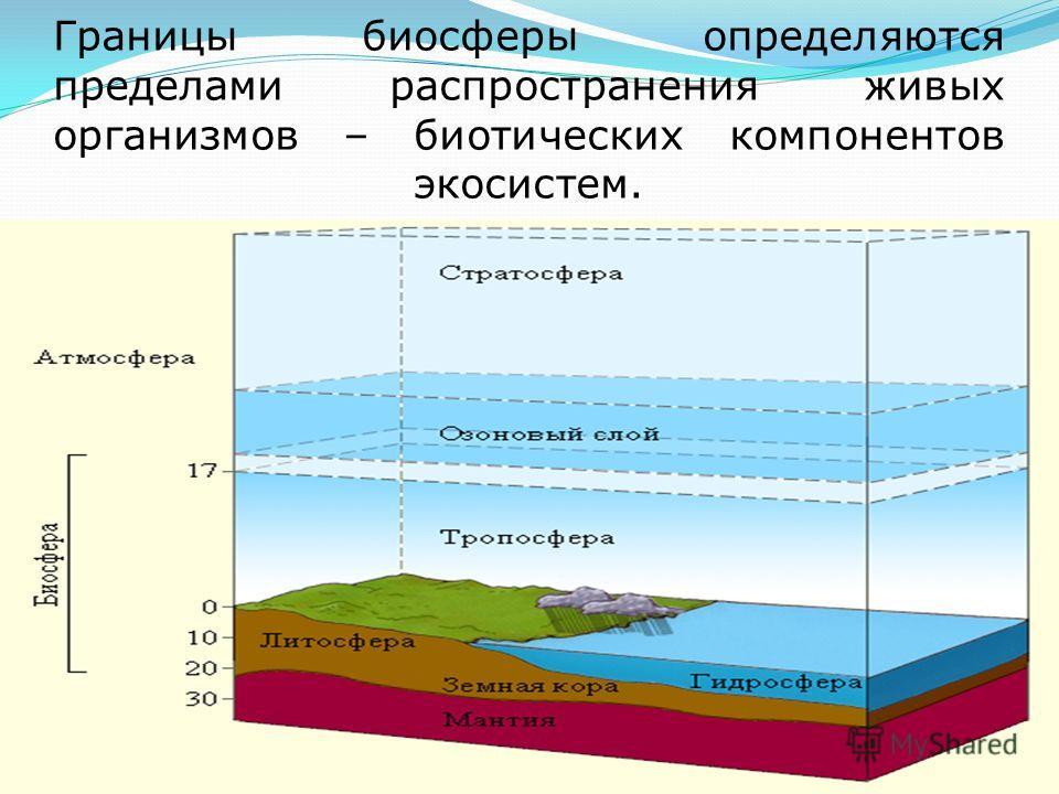 Границы биосферы определяются пределами распространения живых организмов – биотических компонентов экосистем.