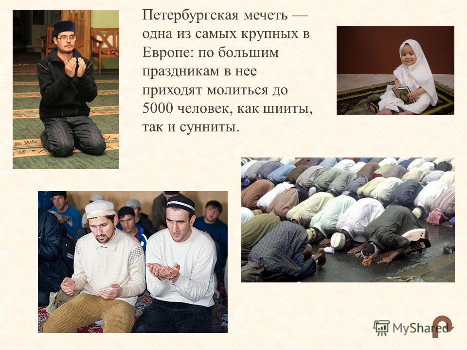 Петербургская мечеть одна из самых крупных в Европе: по большим праздникам в нее приходят молиться до 5000 человек, как шииты, так и сунниты.