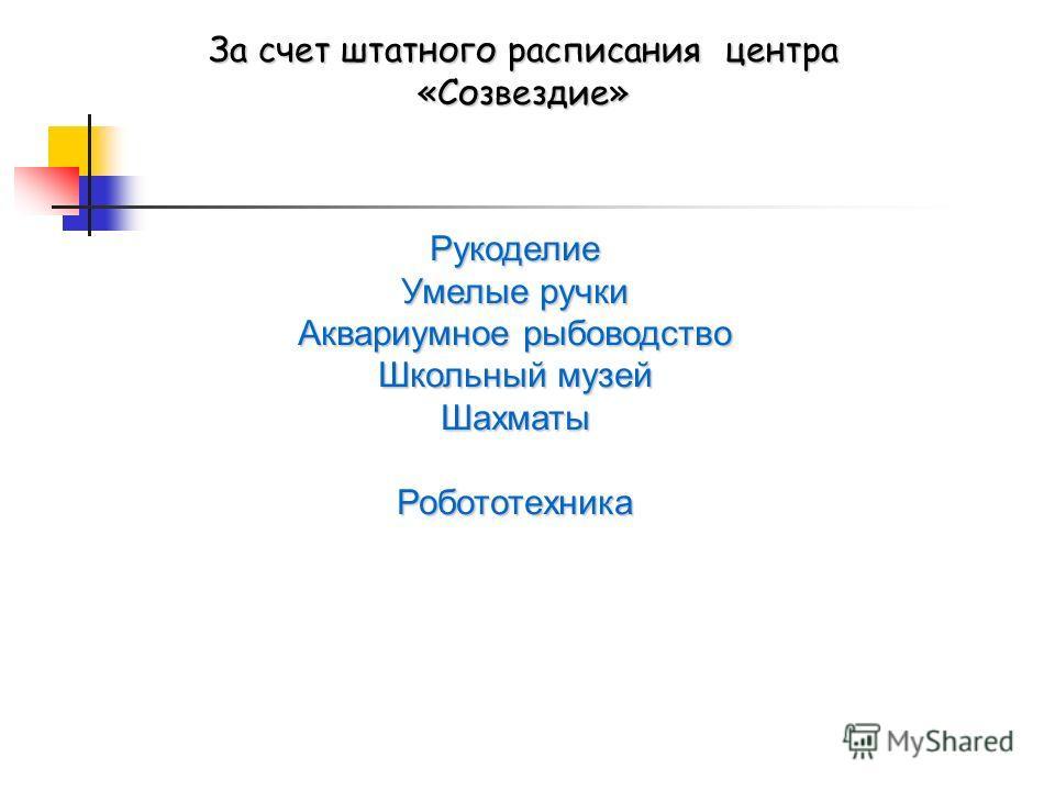 За счет штатного расписания центра «Созвездие» Рукоделие Умелые ручки Аквариумное рыбоводство Школьный музей ШахматыРобототехника