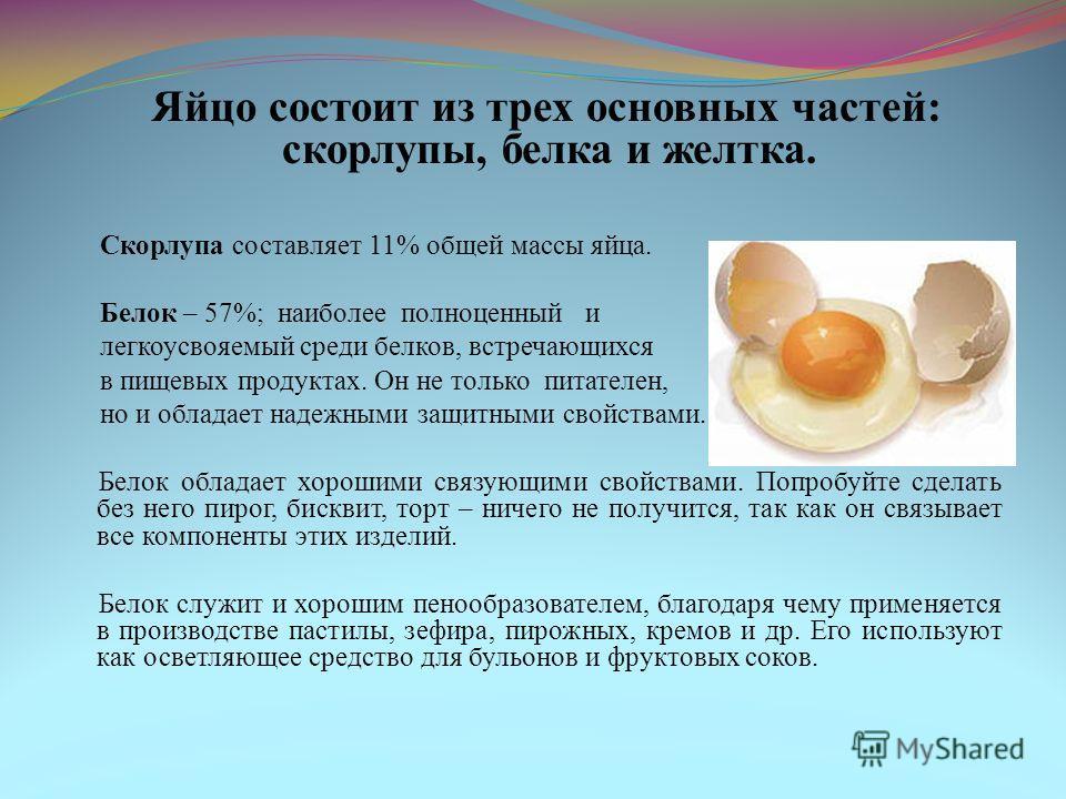 Яйцо состоит из трех основных частей: скорлупы, белка и желтка. Скорлупа составляет 11% общей массы яйца. Белок – 57%; наиболее полноценный и легкоусвояемый среди белков, встречающихся в пищевых продуктах. Он не только питателен, но и обладает надежн