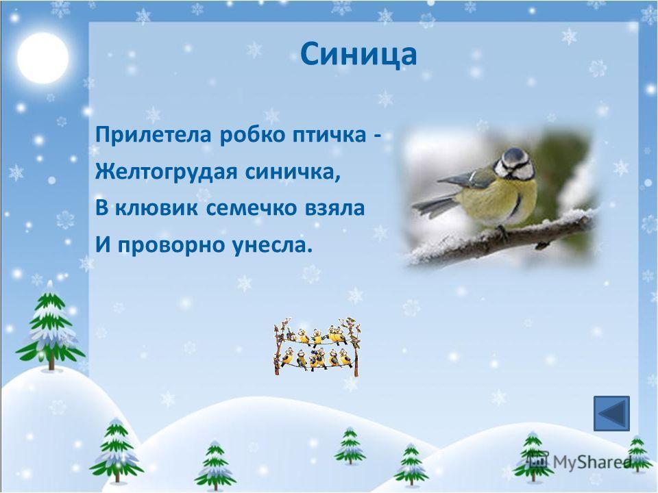 Синица Прилетела робко птичка - Желтогрудая синичка, В клювик семечко взяла И проворно унесла.