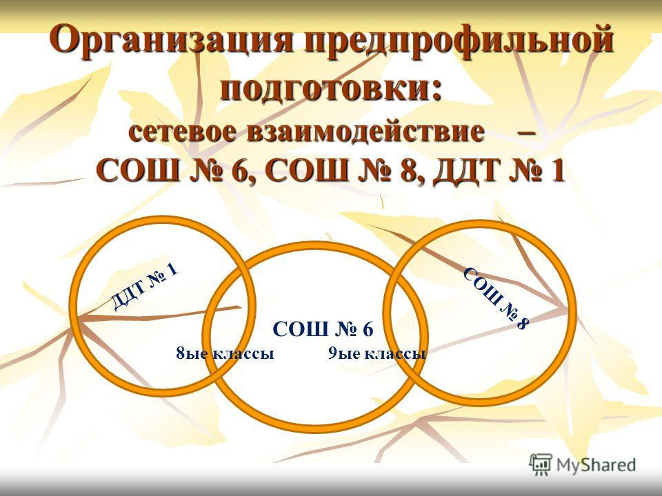 Организация предпрофильной подготовки: сетевое взаимодействие – СОШ 6, СОШ 8, ДДТ 1 СОШ 8 ДДТ 1 СОШ 6 8ые классы 9ые классы