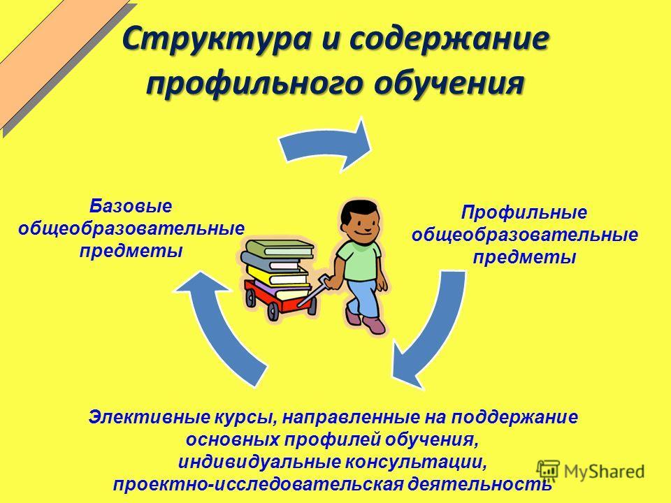 Структура и содержание профильного обучения Базовые общеобразовательные предметы Профильные общеобразовательные предметы Элективные курсы, направленные на поддержание основных профилей обучения, индивидуальные консультации, проектно-исследовательская