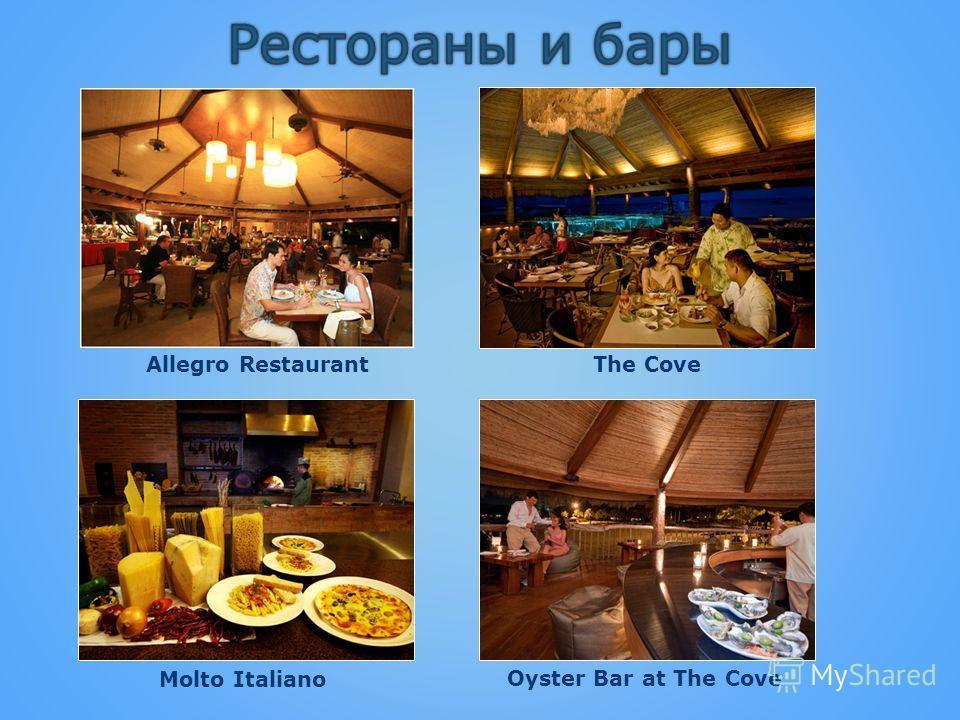 Allegro RestaurantThe Cove Molto Italiano Oyster Bar at The Cove