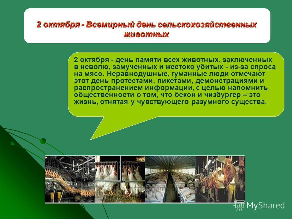 2 октября - Всемирный день сельскохозяйственных животных 2 октября - день памяти всех животных, заключенных в неволю, замученных и жестоко убитых - из-за спроса на мясо. Неравнодушные, гуманные люди отмечают этот день протестами, пикетами, демонстрац
