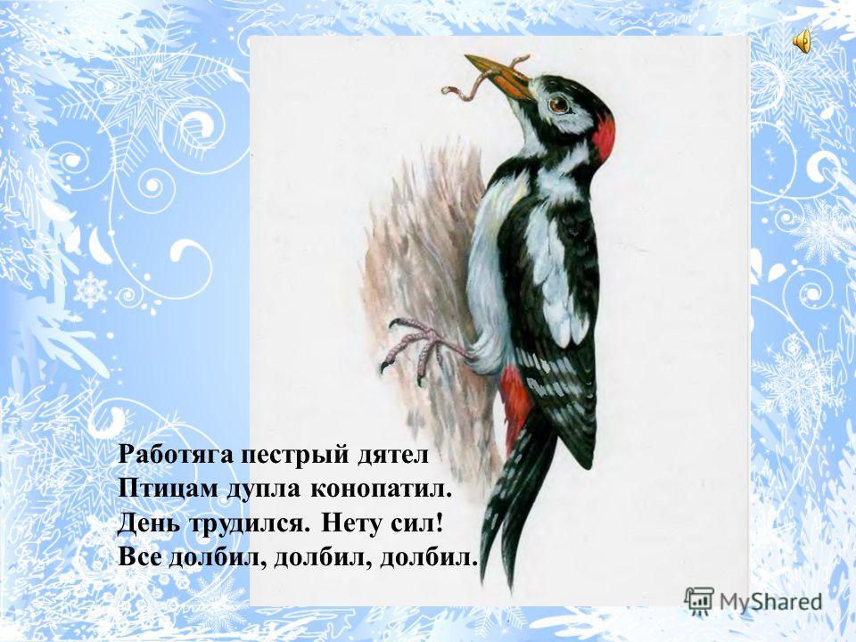 Синица В желтой футболке и черной жилетке Птица синица расселась на ветке. Тенькает звонко птица синица, Лютых морозов она не боится.