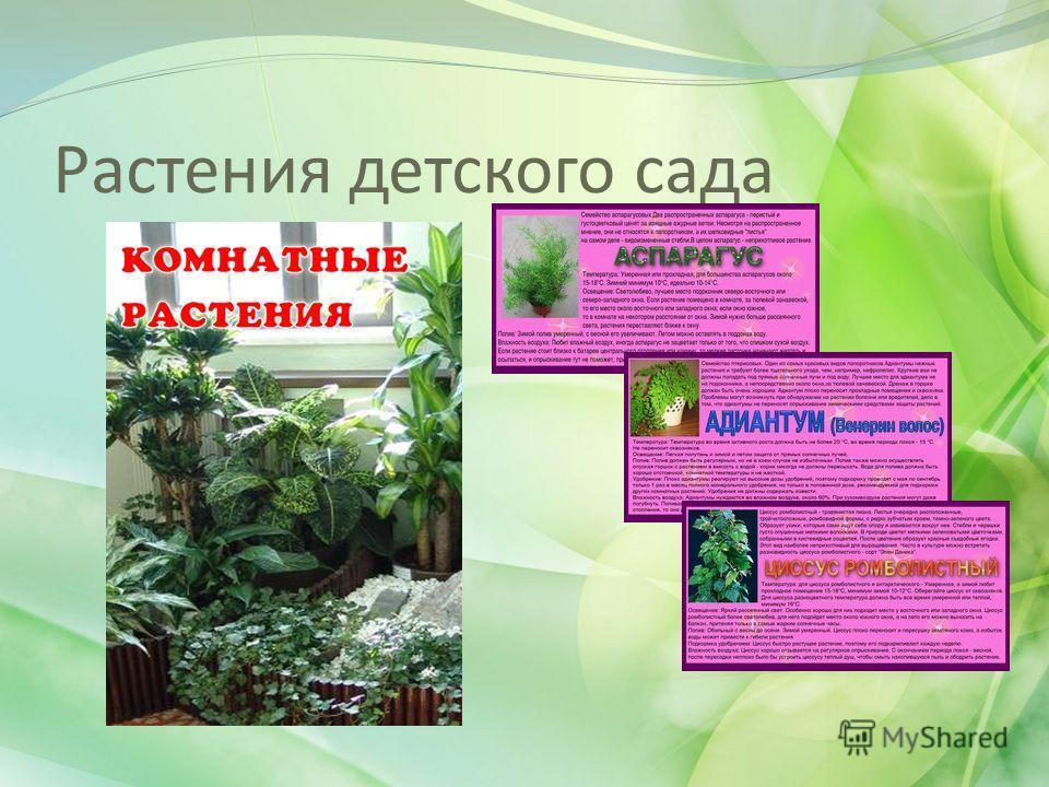 Экологические паспорта