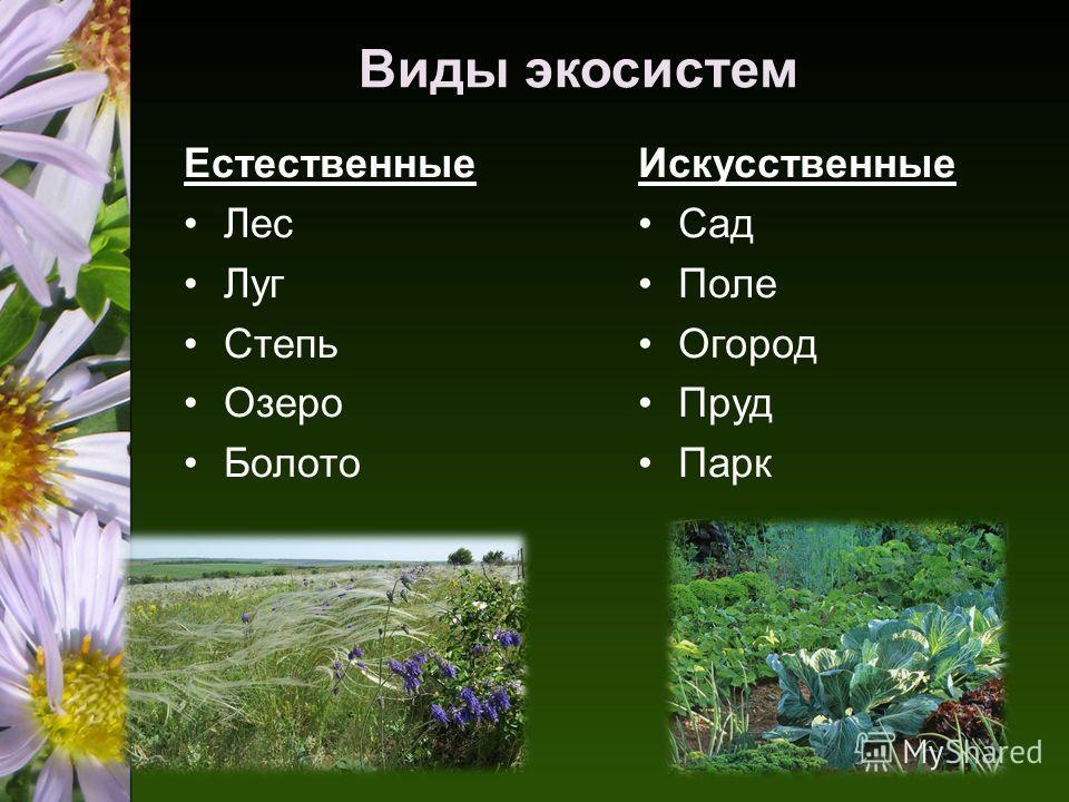 Виды экосистем Естественные Лес Луг Степь Озеро Болото Искусственные Сад Поле Огород Пруд Парк