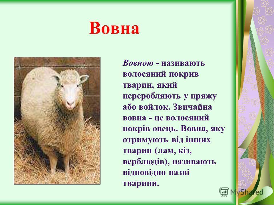 Вовна Вовною - називають волосяний покрив тварин, який переробляють у пряжу або войлок. Звичайна вовна - це волосяний покрів овець. Вовна, яку отримують від інших тварин (лам, кіз, верблюдів), називають відповідно назві тварини.