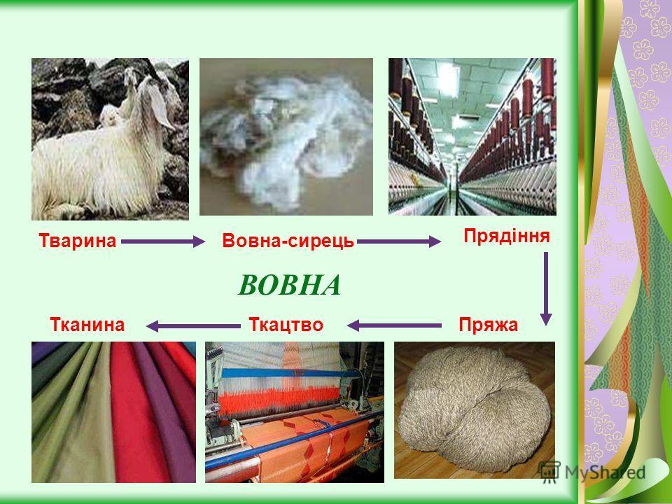 ТваринаВовна-сирець Прядіння ТканинаТкацтвоПряжа ВОВНА