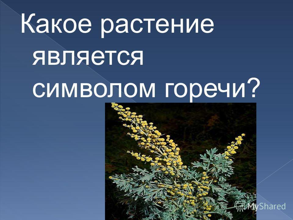 Какое растение является символом горечи?