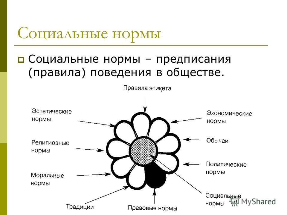 Социальные нормы Социальные нормы – предписания (правила) поведения в обществе.