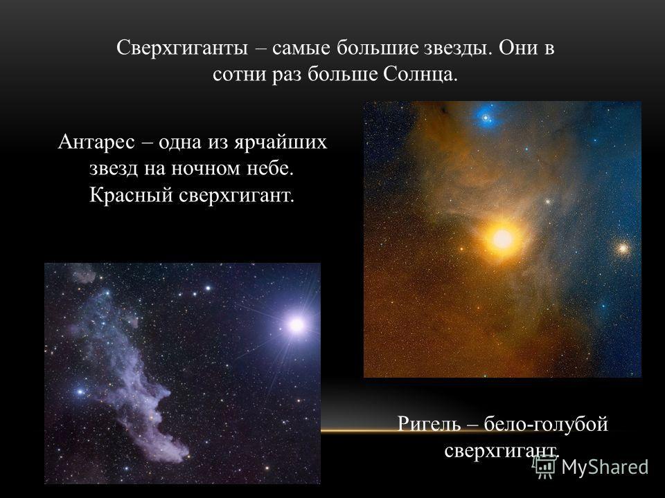 Сверхгиганты – самые большие звезды. Они в сотни раз больше Солнца. Антарес – одна из ярчайших звезд на ночном небе. Красный сверхгигант. Ригель – бело-голубой сверхгигант.
