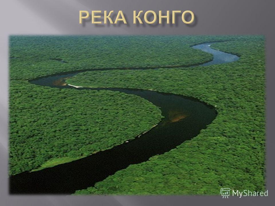 Реферат о реке конго 1405