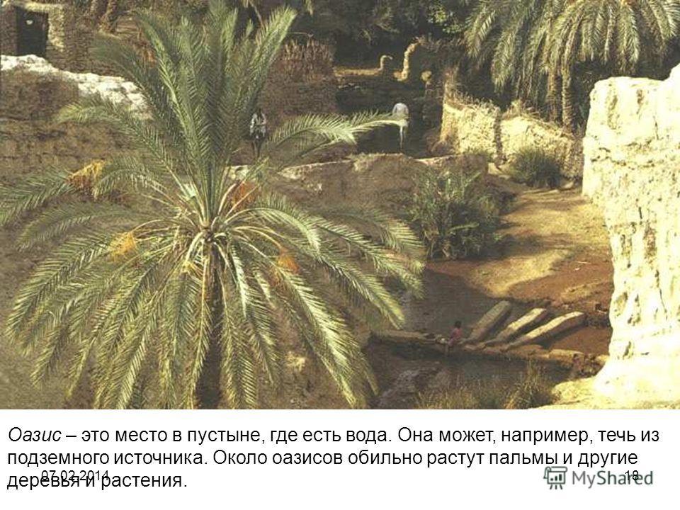 Оазис – это место в пустыне, где есть вода. Она может, например, течь из подземного источника. Около оазисов обильно растут пальмы и другие деревья и растения. 07.02.201418